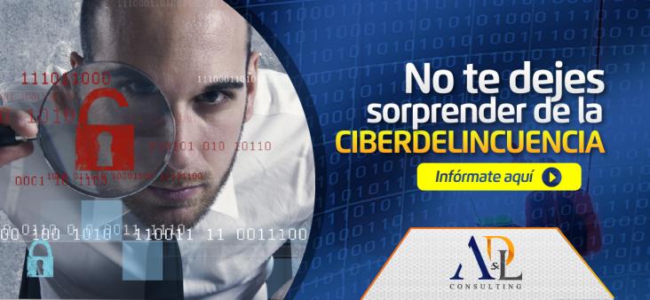 CIBERDELINCUENCIA-01